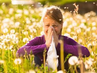 Аллергия - болезнь века. Причины возникновения аллергии. Лечение аллергии