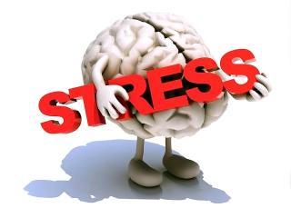 Что такое стресс?
