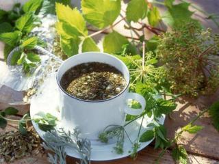 Отвары лекарственных растений в рецептах народной медицины