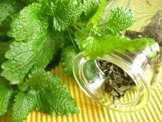 Косметика и лекарственные травы