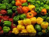 Рецепты овощных блюд из перца