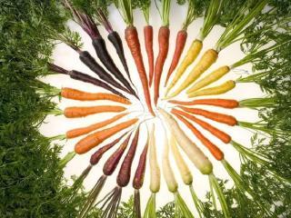 Натуральная косметика. Морковь в рецептах красоты и молодости