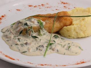 Судак в соусе из грибов. Рецепт вкусного блюда из рыбы