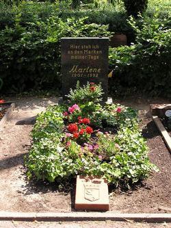 Германия по-прежнему пытается найти в душе примирение со своей великой и строптивой дочерью -- самой прославленной немецкой актрисой ХХ столетия...