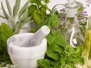 Группа крови и лекарственные растения