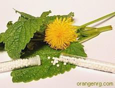 Гомеопатия и женское здоровье (медицинская энциклопедия)