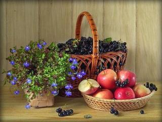 Варенье из черноплодной рябины - рецепт с фото