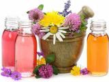 Лекарственные травы для тех, кто хочет поправиться