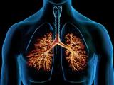 Бронхит. Лечение бронхита и кашля