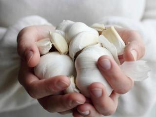 Чеснок и морская капуста для похудения