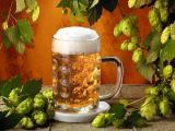 Пиво может выручить вас при простуде