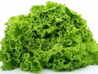 Натуральная косметика. Салат листовой в рецептах женской красоты
