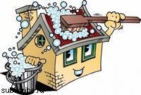 Умелое домоводство: чистящие и моющие средства