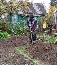 Весенние работы на садовом участке