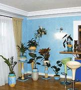 Правильная подкормка комнатных растений