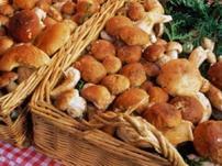 Особенности приготовления грибов