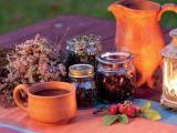 Лекарственные растения для красоты и свежести