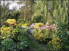 Минеральные удобрения для вашего сада