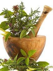 Лекарственное действие растений