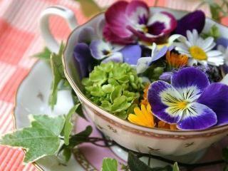 Природные средства против лишнего веса