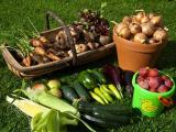Советы по хранению урожая